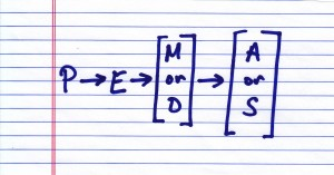 D or M, S or A